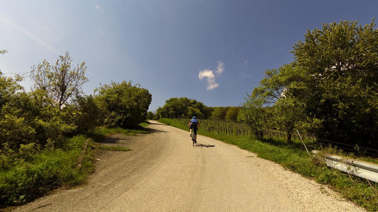 Der Radsporttreff