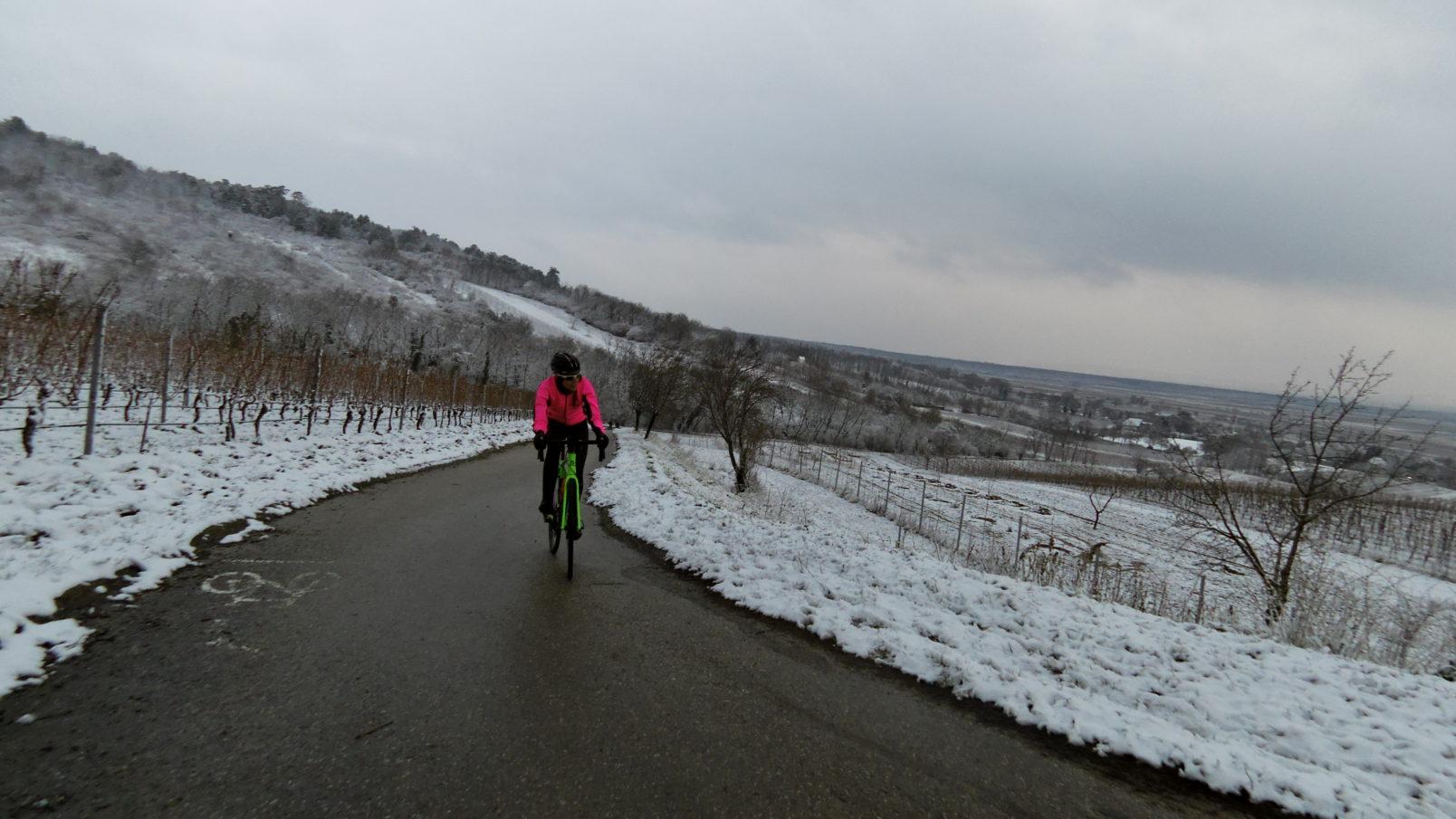 Eisprinzessin im Winter